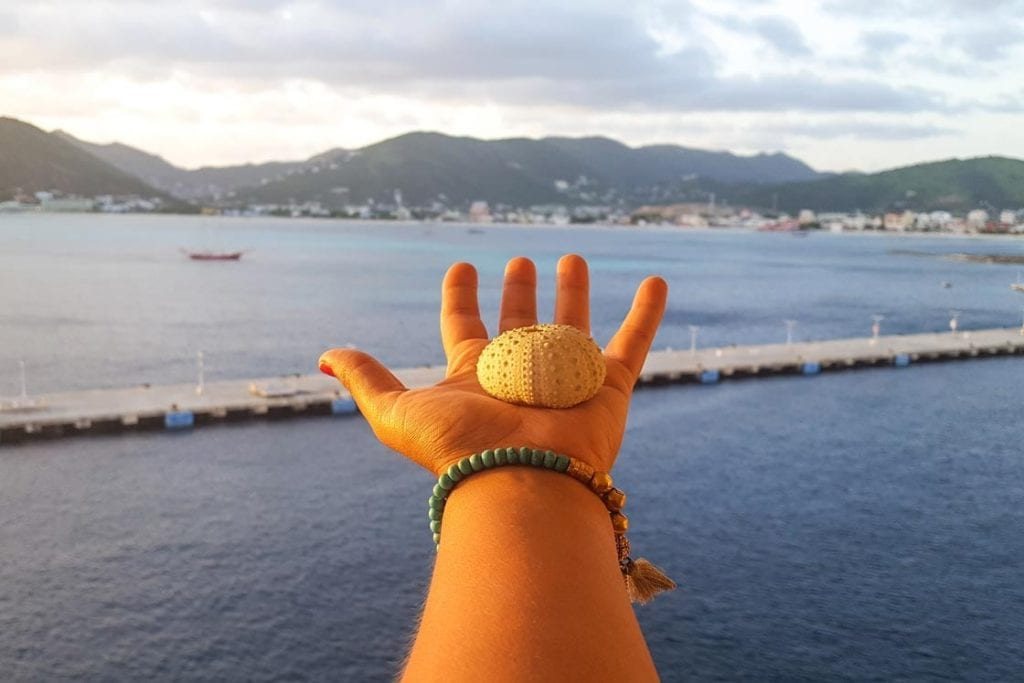 MSC Divina Cruise Destination St Maarten