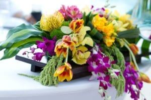 Mexico Traditional Cultural Weddings