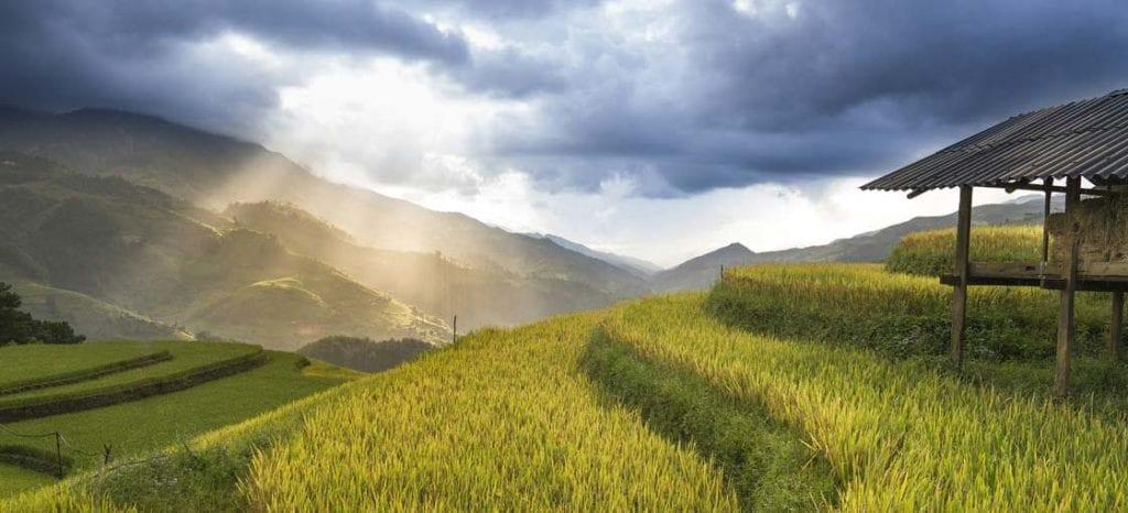 Good Time to Visit Vietnam